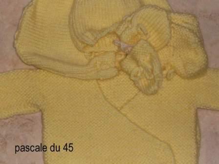 Offert par Pascale (45)